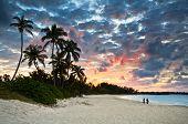 Tropical Caribbean White Sand Beach