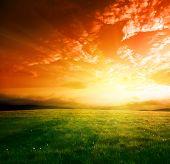 Постер, плакат: поле весеннего трава и закат