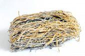 Dried Laminaria
