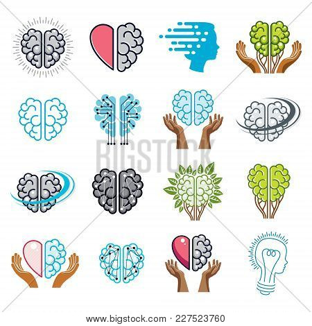 Brain And Intelligence Vector Icons