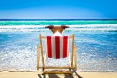 Jack Russell Dog Resting And Relaxing On A Hammock Or Beach Chair At The Beach Ocean Shore, On Summe poster