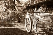 Sepia Old-fashioned Image Of Old Pushcart On Lawn In Front Of Old Bamboo Fence And Farm Shed poster