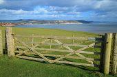 Wooden Farmland Fence On The Public Footpath Of South West Coast Path Near Seaton In Devon poster