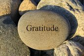 image of gratitude  - Positive reinforcement word gratitude engrained on a rock - JPG