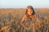 The Girl In Filed Wheats.