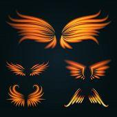 Flame Bird Fire Wings Fantasy Feather Burning Blaze Fly Blazing Danger Flare Glow Fiery Wings Burn H poster