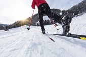 Man cross-country skiing during sunny winter day, winter sport. poster