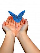 children hands and blue butterfly