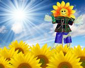 scarecrow in a sunflower field