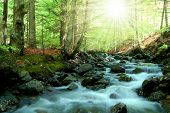 mountain creek in the Bavarian Forest-Germany