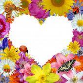 flor coração