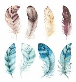 Hand Drawn Watercolor Vibrant Feather Set. Boho Style. Illustration Isolated On White. Bird Fly Desi poster