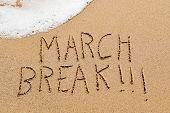 high angle view of the text march break written in the wet sand of the seashore, in a quiet beach, w poster