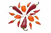 Group Of Various Hot Chili Peppers