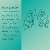 Two Section Poster About Human Lungs With Place For Text. Hand Drawn Human Brain. Human Anantomy Vec poster