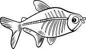image of x-ray fish  - cartoon illustration of x - JPG