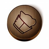 Brown Line Veterinary Clinic Symbol Icon Isolated On White Background. Cat Veterinary Care. Pet Firs poster