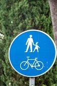 Bicycle And Pedestrian Lane Road Sign On Pole Post, Large Blue Round Isolated Bike Cycling And Walki poster