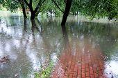 Flooded Red Brick Walkway, Horizontal Photo, Rain poster