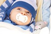 Sweet Little Newborn Baby With Pacifier In Babies Pram With Toy Teddy Bear poster