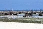 Fishing Village In Zanzibar