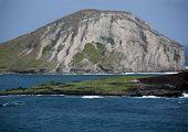 Manana, Rabbit Island