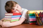 Tired Boy Sleeps On The Books