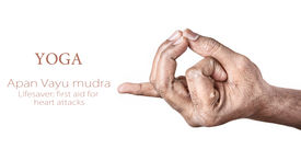 stock photo of samadhi  - Hands in Apan Vayu mudra by Indian man isolated at white background - JPG