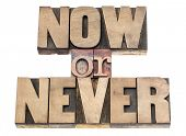 now or never - motivation phrase - isolated text in vintage letterpress wood type printing blocks
