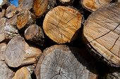 Logs, Posada De Valdeon, Leon, Castilla Y Leon, Spain