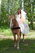 stock photo of birchwood  - young woman in the dress of fiancee on a horse by a canicular day in a birchwood - JPG