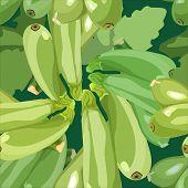 seamless pattern ripe zucchini