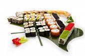 Set de Sushi - diferentes tipos de Maki Sushi y Nigiri Sushi. Servido sobre hojas verdes