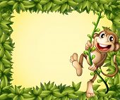 Illustration of the green border with a monkey