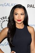 LOS ANGELES - FEB 27:  Naya Rivera arrives at the PaleyFest Icon Award 2013 at the Paley Center For