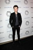 LOS ANGELES - FEB 27:  Chris Colfer arrives at the PaleyFest Icon Award 2013 at the Paley Center For