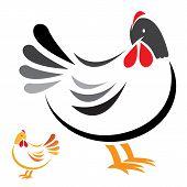 Vector image of an hen