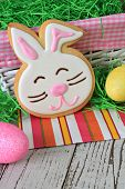 Easter bunny cookie and Easter eggs.
