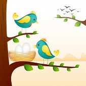 Birds with Nest