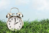 stock photo of daylight-saving  - Clock in grass - JPG