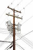 Utility pole with power cables and transformers