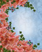 Azaleas And Butterflies Floral  Border