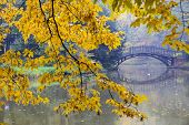 foto of humidity  - Autumn  - JPG