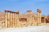 Ancient Palmyra, Syria