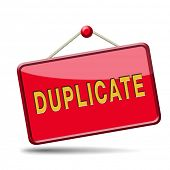 duplicate sign or icon double product or document label or button