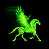 Green fire Pegasus.