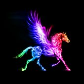 Colorful fire Pegasus.