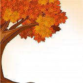 Happy Thanksgiving Day concept with red autumn leaves maple tree on abstract background with space for your text.
