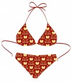 The Isolated Red Bikini Suit On A White Background. Vector Illustration