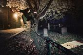 image of skateboard  - Young Skateboarder doing a Ollie trick over a Fence at night - JPG